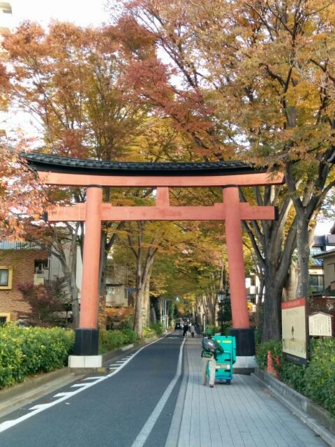 氷川神社 in 大宮